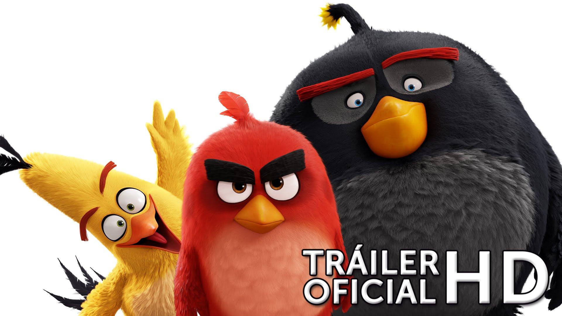 angry birds trailer pelicula www.decharcoencharco.com