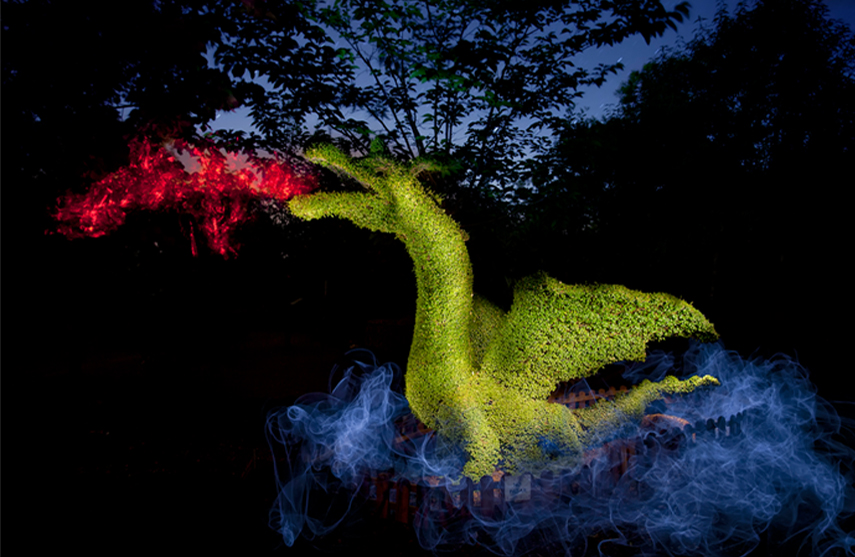 dragon retocado noche